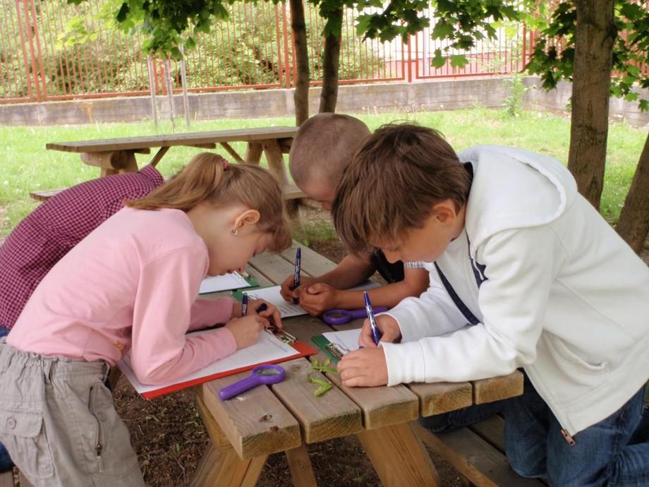 Mladí přírodovědci zapisují výsledky bádání. Zdroj_ STEP BY STEP CR