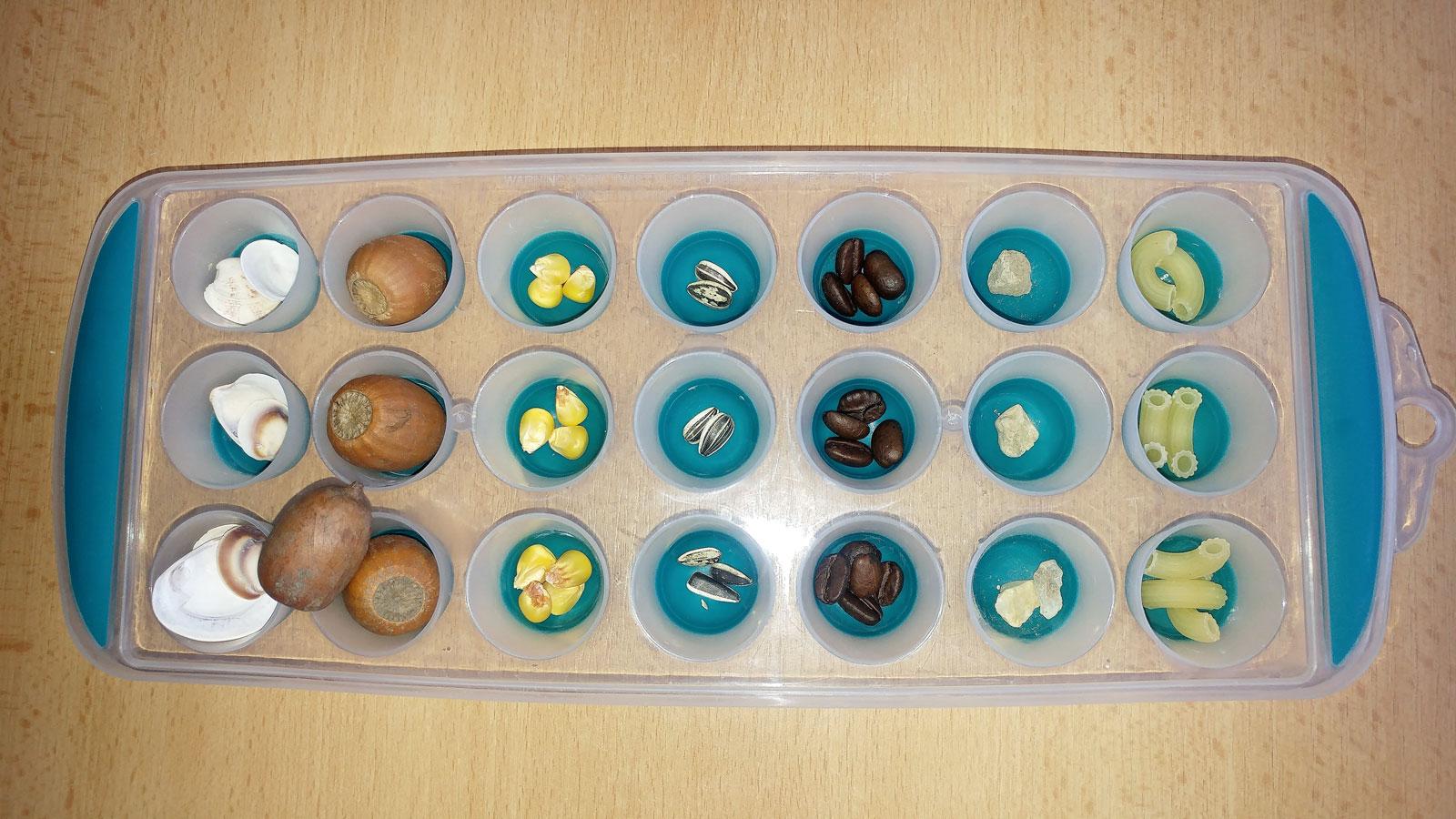 Hra rozvíjející matematické dovednosti s pomocí tvořítka na led a přírodnin_5. Dítě doplnilo 2. řádek - v každém poli tolik předmětů, jako bylo v 1. řádku. Zdroj Archiv Vladimíry Tomíkové.